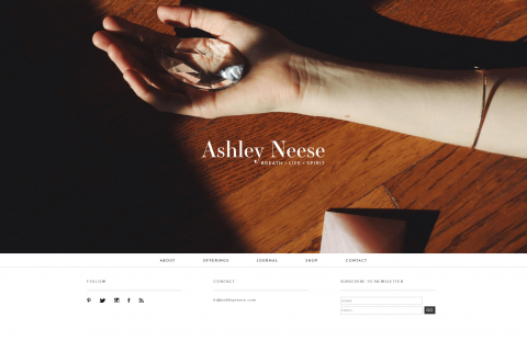 WordPress-Ashly Nesee