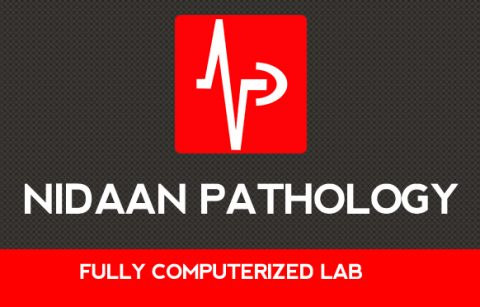 Logo- Nidaan Pathology
